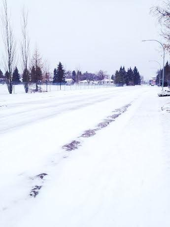snowy 2